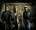 iggy-and-the-stooges-565765.jpg