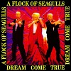 a-flock-of-seagulls-159231.jpg