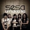 sesa-394372.jpg