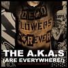 a-k-a-s-415321.jpg