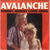 avalanche-535751.jpg