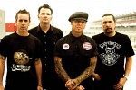social-distortion-247482.jpg