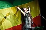 rocky-leon-336997.jpg