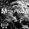 morfium-266620.jpg