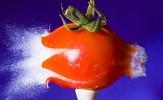 vampires-on-tomato-juice-302646.jpg