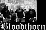 bloodthorn-590036.jpg