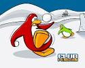 club-penguin-468117.jpg