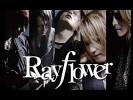 rayflower-493809.jpg