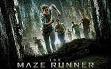 maze-runner-521422.jpg