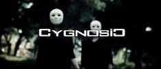 cygnosic-528870.jpg