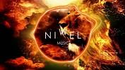 niwel-574590.jpg