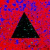 andy-sarmon-579874.jpg