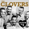 the-clovers-619788.jpg