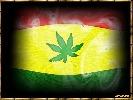 reggae-9351.jpg